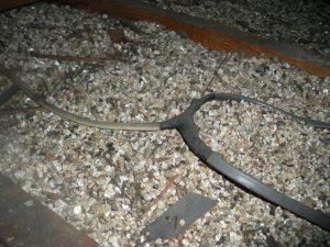 Photo of Vermiculite