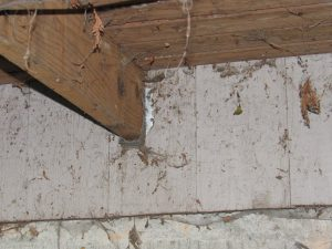 photo shows joist hangers nailed into the siding